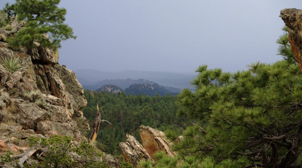 Scenery with rocks and trees and distant valley.